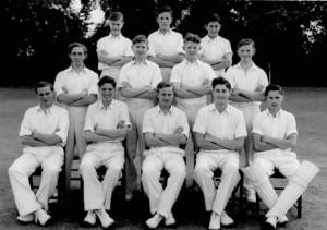 1951 Cricket