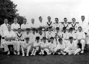 Cricket undated 1