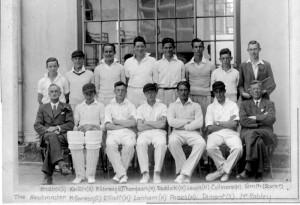 Cricket undated 12