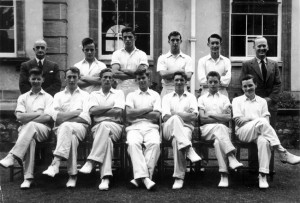 Cricket undated 3