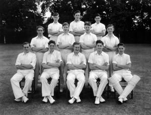 Cricket undated 5