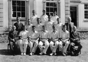 Cricket undated 7