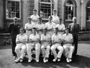 Cricket undated 8